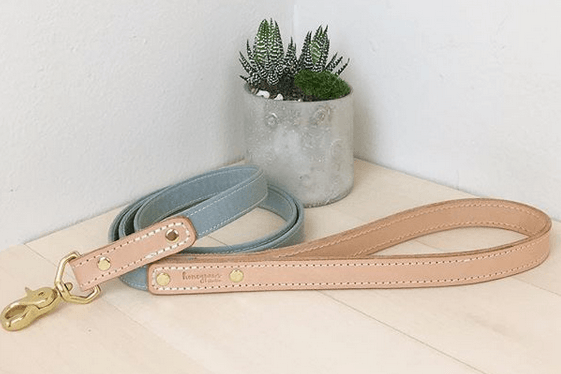 Honey Paws Pop-up Hosted by Madewell