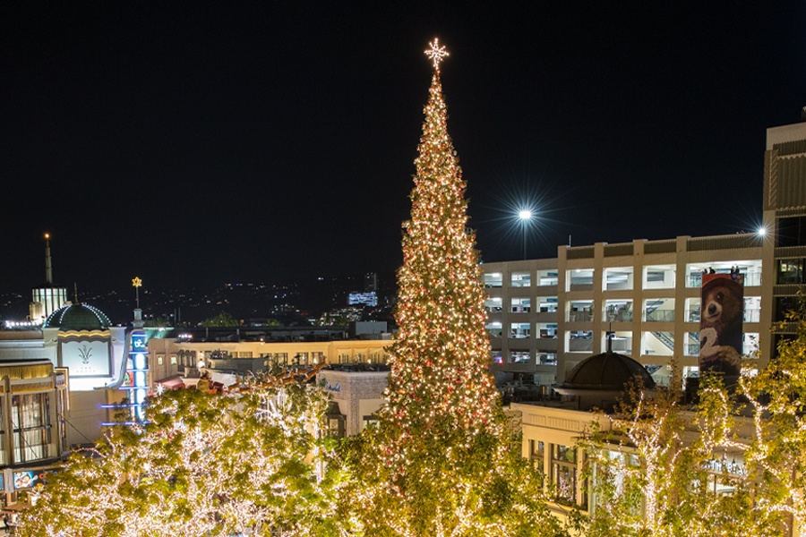 Get to Know Our Christmas Tree • The Grove LA
