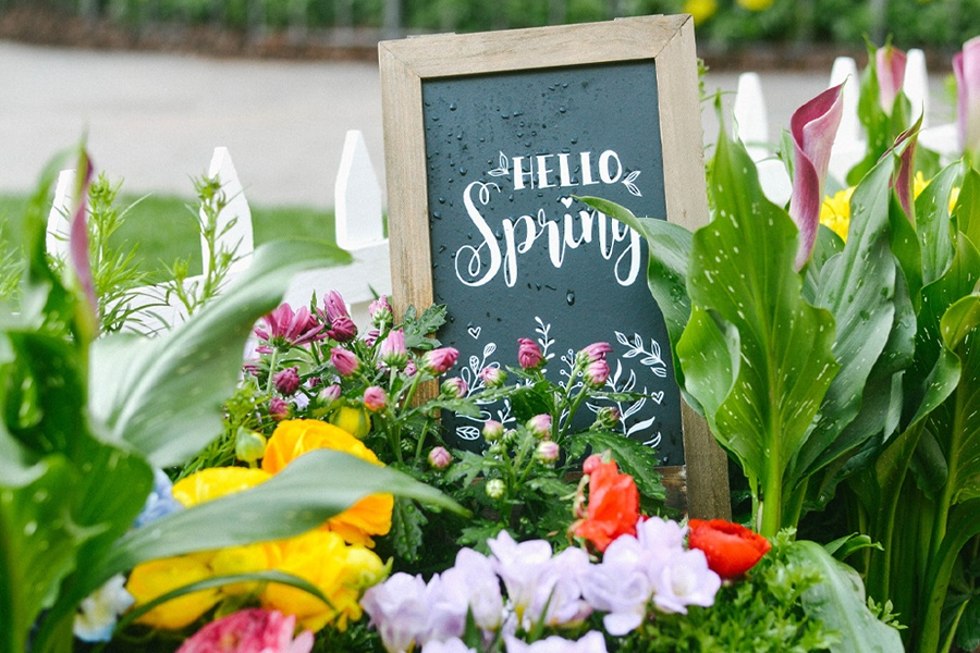Springtime at The Grove: Photo Op